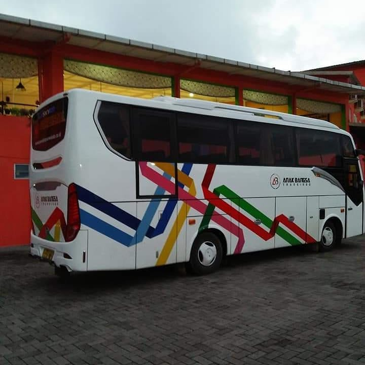 Executive Medium Bus